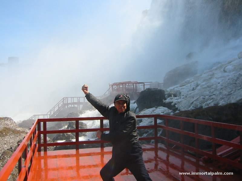 Carl Dechiara's teacher Grandmaster Chen Qingzhou - Niagara Falls