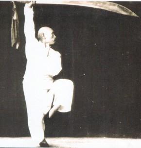 Carl Dechiara's Fu Bagua Lineage - Fu Chen Sung