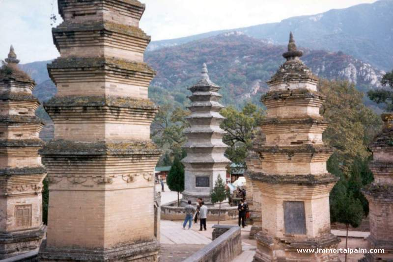 Carl Dechiara Shaolin Temple in China